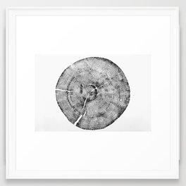 Rock Canyon Pine Print Framed Art Print