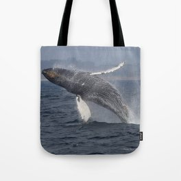 Breaching humpback whale in Monterey Tote Bag