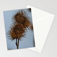 The Burr Stationery Cards