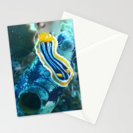 Yellow and blue striped chromodoris nudi Stationery Cards