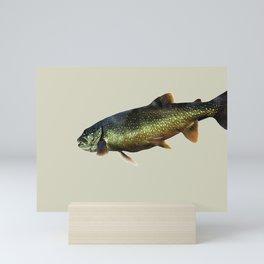 Trout on Beige Mini Art Print
