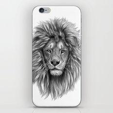 Lion-  portrait SK073 iPhone & iPod Skin