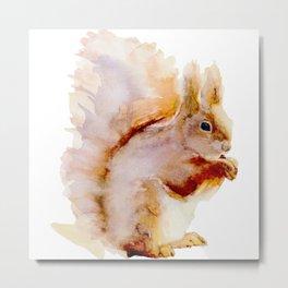 Watercolor Squirrel Painting Metal Print