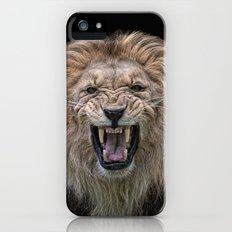 beware of the cat Slim Case iPhone (5, 5s)