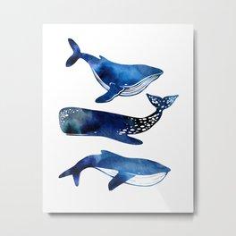 3 Whales Metal Print
