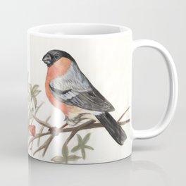 Eurasian bullfinch bird Coffee Mug