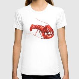 Red Lobster, restaurant kithcne design boston T-shirt