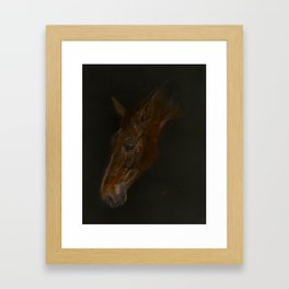 Bay Horse, Belgian Warmblood. Framed Art Print