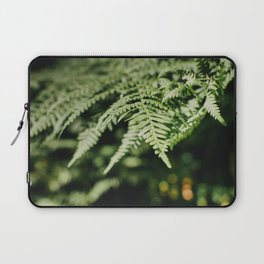 Fern is dancing in the light I Plant of the forest I Photography Laptop Sleeve