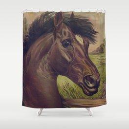 Vintage Horse Illustration (1893) Shower Curtain