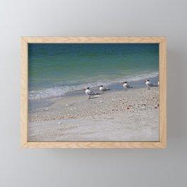 Dolphin Watching on Lover's Key Framed Mini Art Print