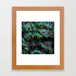 Soft and Fluffy Colorful Peacock Feathers Framed Art Print