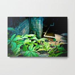 regrowth Metal Print