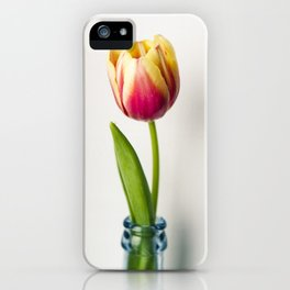 Tulip beauty iPhone Case
