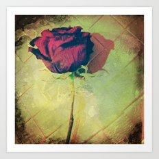 Roseanna Art Print