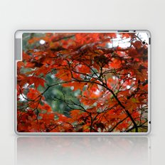 Red Tree on a Fall Morning Laptop & iPad Skin