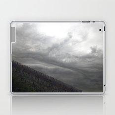 grapevine Laptop & iPad Skin