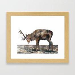 Deer #1 Framed Art Print