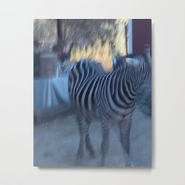 the zebra of my dreams Metal Print