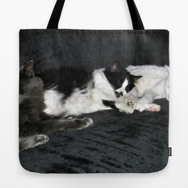 3 cats lounging Tote Bag