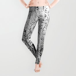Birch Grove On A Sunny Winter Day In Black And White Leggings