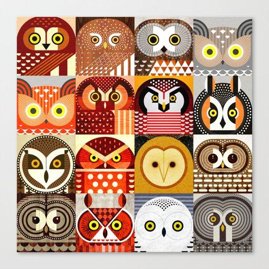 North American Owls Canvas Print