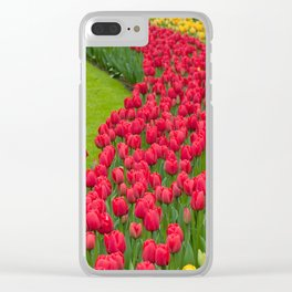 Flower beds of multicolored tulips Clear iPhone Case