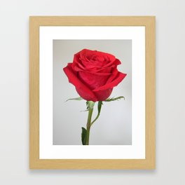 I know the sweetest girl Framed Art Print