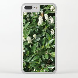 green/white Clear iPhone Case