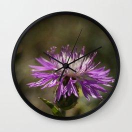 Centaurea alba Wall Clock
