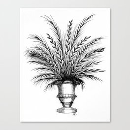Ferns in Urns Canvas Print