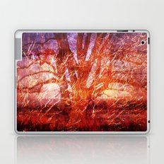 Nature Works Laptop & iPad Skin