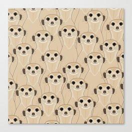 Meerkats Kalahari Desert Canvas Print