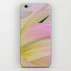 Water Color iPhone & iPod Skin