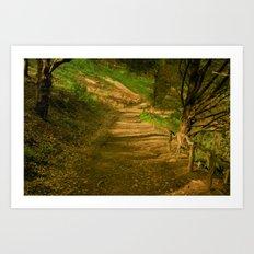 Road Less Travelled Art Print