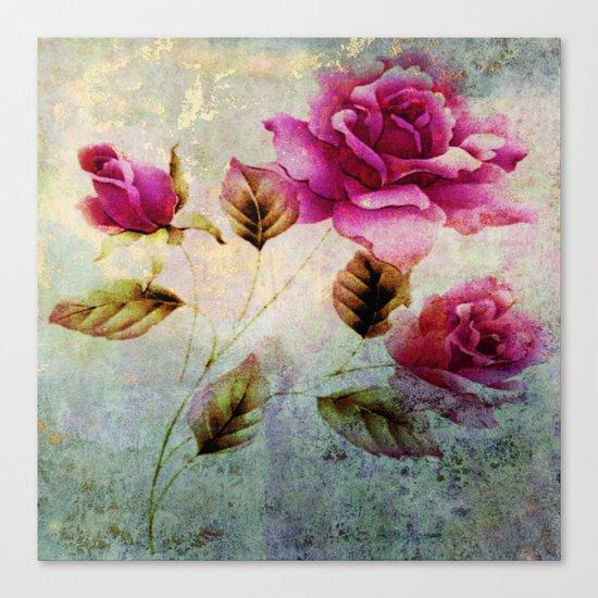 rosebush and textures Canvas Print