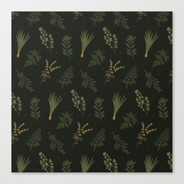 Fresh Herbs 2 Canvas Print