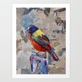 Painted Bunting Bird on Newsprint Art Print