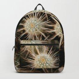 Desert Hedgehogs Backpack