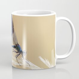 Banded Demioselle On Grass Coffee Mug