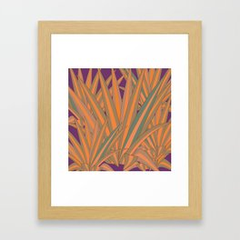 Colorful Agaves Framed Art Print
