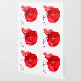 Poppies (duet) Wallpaper