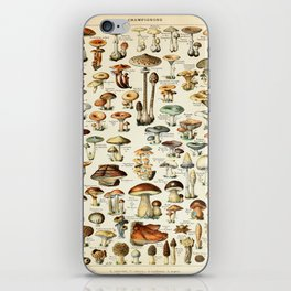 Vintage Mushroom & Fungi Chart by Adolphe Millot iPhone Skin