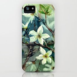 Early Spring Flowers iPhone Case