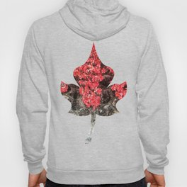 Pink red ivy leaves autumn stone wall Hoody