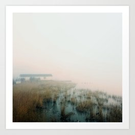 House in the Mist Art Print