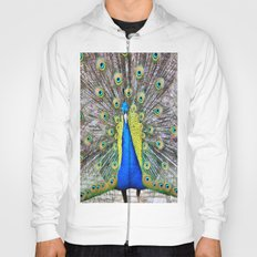 Peacock Display Hoody
