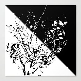 Tri Bush Canvas Print