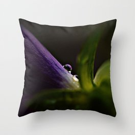 One Last Night Throw Pillow