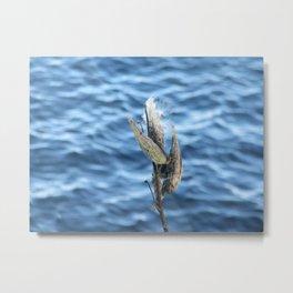 Under milkweed Metal Print